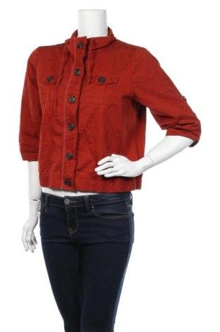Γυναικείο μπουφάν Christopher & Banks, Μέγεθος M, Χρώμα Καφέ, Βαμβάκι, Τιμή 7,50€
