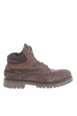 Pánske topánky Wrangler