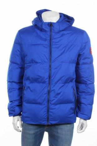 Pánska bunda  Calvin Klein Jeans, Veľkosť L, Farba Modrá, Polyester, perie , Cena  160,42€