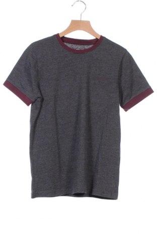 Παιδικό μπλουζάκι Teddy Smith, Μέγεθος 12-13y/ 158-164 εκ., Χρώμα Γκρί, 60% βαμβάκι, 40% πολυεστέρας, Τιμή 7,18€
