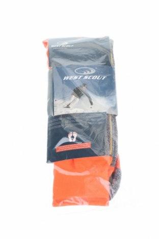 Спортни чорапи West Scout, Размер S, Цвят Оранжев, 80% полиестер, 17% полиамид, 3% еластан, Цена 12,60лв.