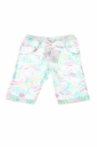 Detské nohavice , Veľkosť 3-6m/ 62-68 cm, Farba Viacfarebná, Cena  5,05€