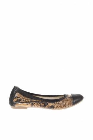 Дамски обувки San Marina, Размер 38, Цвят Многоцветен, Естествена кожа, Цена 36,40лв.