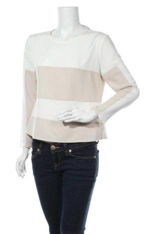 Γυναικεία μπλούζα Steeam Bee Inspired, Μέγεθος S, Χρώμα  Μπέζ, 96% πολυεστέρας, 4% ελαστάνη, Τιμή 5,00€