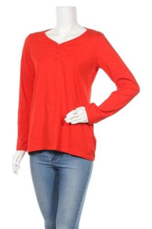 Γυναικεία μπλούζα Up 2 Fashion, Μέγεθος M, Χρώμα Κόκκινο, 95% βαμβάκι, 5% ελαστάνη, Τιμή 8,77€
