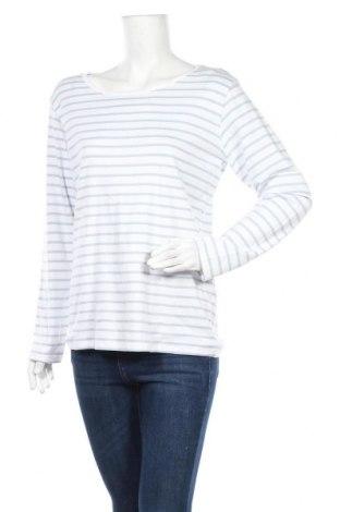 Γυναικεία μπλούζα Vrs Woman, Μέγεθος XXL, Χρώμα Μπλέ, Βαμβάκι, Τιμή 6,43€