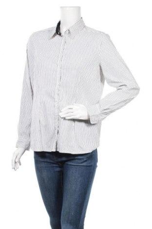 Γυναικείο πουκάμισο Kate Storm, Μέγεθος L, Χρώμα Λευκό, 74% βαμβάκι, 22% πολυαμίδη, 4% ελαστάνη, Τιμή 3,86€