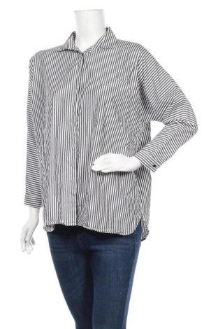 Дамска риза Zara, Размер M, Цвят Сив, Цена 16,65лв.