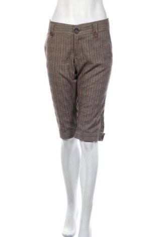 Γυναικείο κοντό παντελόνι Mbym, Μέγεθος XL, Χρώμα Καφέ, 38% βισκόζη, 30% άλλα υφάσματα, 12% μαλλί, 20% πολυεστέρας, Τιμή 5,23€