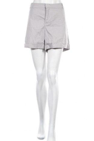 Γυναικείο κοντό παντελόνι Yessica, Μέγεθος XXL, Χρώμα Γκρί, Τιμή 3,86€