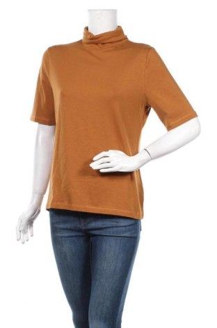 Γυναικείο ζιβάγκο Kate Storm, Μέγεθος L, Χρώμα Καφέ, 48% βαμβάκι, 48% μοντάλ, 4% ελαστάνη, Τιμή 12,47€