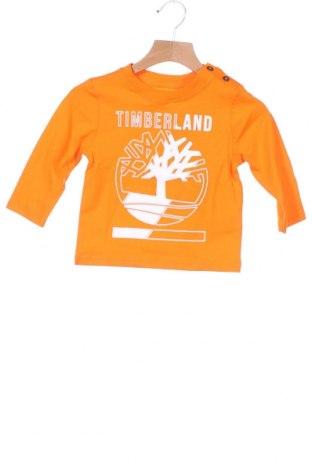 Παιδική μπλούζα Timberland, Μέγεθος 12-18m/ 80-86 εκ., Χρώμα Πορτοκαλί, Βαμβάκι, Τιμή 13,08€
