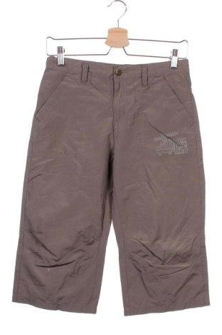 Παιδικό παντελόνι Alive, Μέγεθος 10-11y/ 146-152 εκ., Χρώμα Πράσινο, 55% πολυεστέρας, 45% βαμβάκι, Τιμή 4,68€