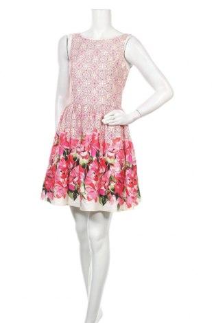 Φόρεμα Red Herring, Μέγεθος M, Χρώμα Πολύχρωμο, Βαμβάκι, Τιμή 16,05€