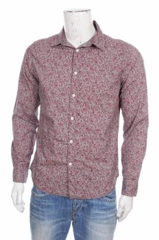 Męska koszula Linea