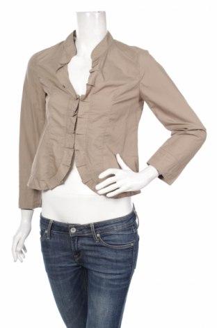 Γυναικείο πουκάμισο Loft By Ann Taylor, Μέγεθος XS, Χρώμα Καφέ, 100% βαμβάκι, Τιμή 22,27€