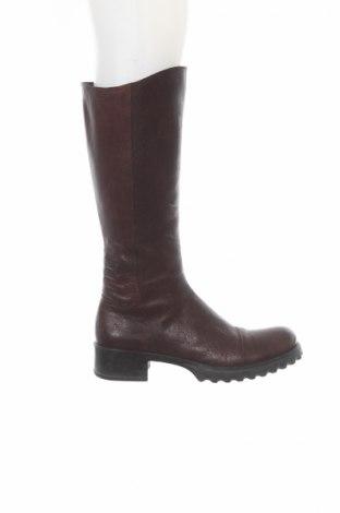 Γυναικείες μπότες Baldinini
