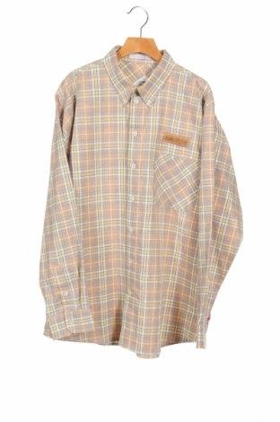 Детска риза Alouette, Размер 13-14y/ 164-168 см, Цвят Многоцветен, 70% памук, 30% полиестер, Цена 5,50лв.