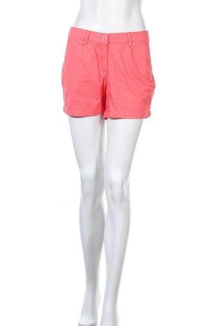 Γυναικείο κοντό παντελόνι Colours Of The World, Μέγεθος L, Χρώμα Ρόζ , Βαμβάκι, Τιμή 3,18€