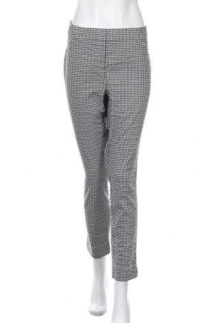 Дамски панталон Peter Hahn, Размер XL, Цвят Черен, 46% полиестер, 36% вискоза, 13% полиамид, 5% еластан, Цена 33,32лв.
