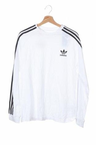 Παιδική μπλούζα Adidas Originals, Μέγεθος 15-18y/ 170-176 εκ., Χρώμα Λευκό, Βαμβάκι, Τιμή 15,16€