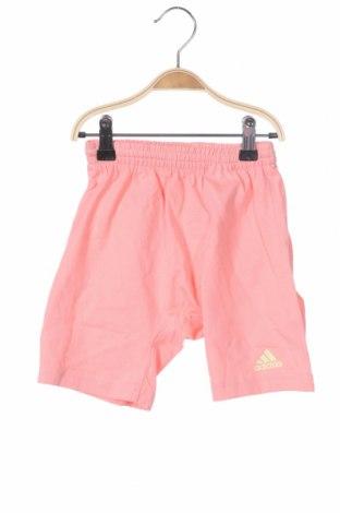 Παιδικό κοντό παντελόνι Adidas, Μέγεθος 18-24m/ 86-98 εκ., Χρώμα Ρόζ , Βαμβάκι, Τιμή 14,07€