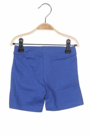 Παιδικό κοντό παντελόνι Blue Seven, Μέγεθος 6-9m/ 68-74 εκ., Χρώμα Μπλέ, 100% βαμβάκι, Τιμή 11,21€