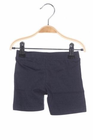 Pantaloni scurți pentru copii Blue Seven, Mărime 2-3m/ 56-62 cm, Culoare Albastru, 100% bumbac, Preț 13,31 Lei