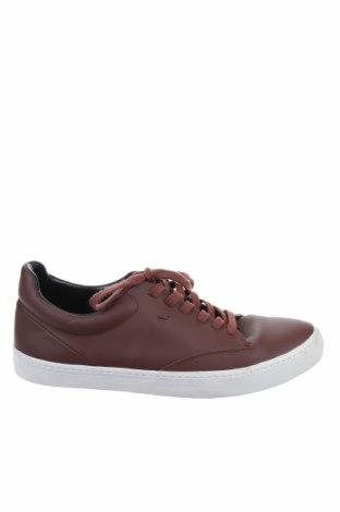 Ανδρικά παπούτσια Boxfresh, Μέγεθος 43, Χρώμα Καφέ, Δερματίνη, Τιμή 19,60€