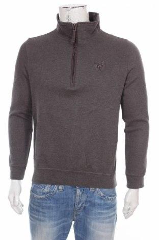 Męski sweter Campione