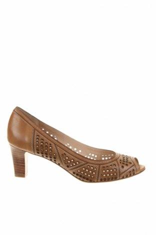 Dámske topánky  Lottusse