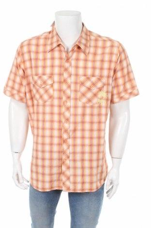 Мъжка риза Fishbone