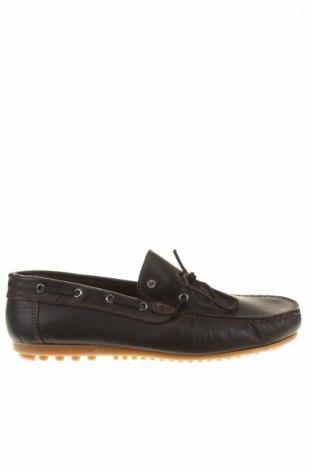 Pánske topánky Galliano
