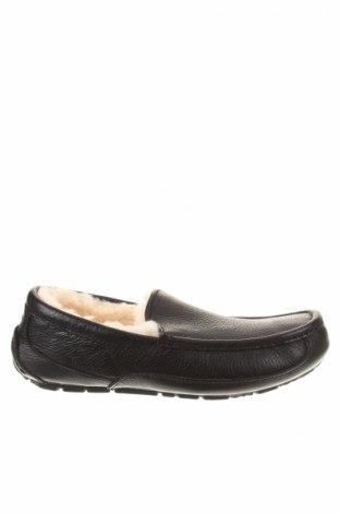 Pánske topánky Ugg Australia