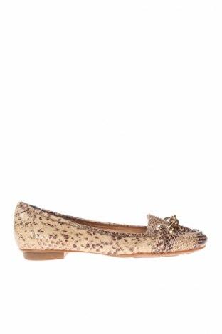 Γυναικεία παπούτσια Florsheim, Μέγεθος 40, Χρώμα Πολύχρωμο, Γνήσιο δέρμα, Τιμή 24,71€