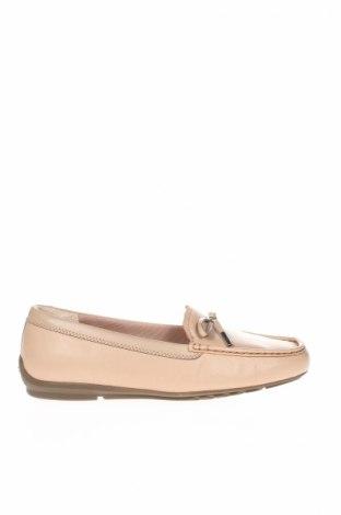 Dámske topánky  Rockport