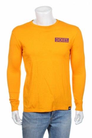 Мъжка блуза Dickers