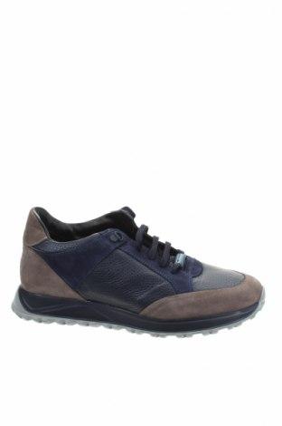 Ανδρικά παπούτσια Baldinini