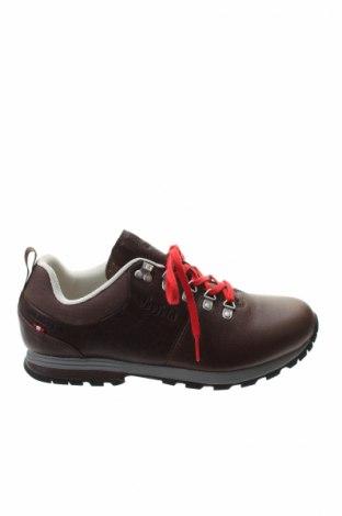 Férfi cipők  Dachstein