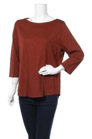 Дамска блуза Chico's, Размер M, Цвят Кафяв, 60% памук, 40% модал, Цена 35,91лв.