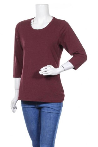 Γυναικεία μπλούζα Janina, Μέγεθος XL, Χρώμα Κόκκινο, 57% βαμβάκι, 38% πολυεστέρας, 5% ελαστάνη, Τιμή 10,52€