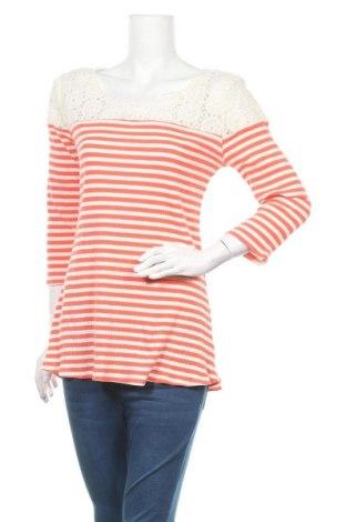 Дамска блуза New Directions, Размер M, Цвят Бял, Цена 16,07лв.