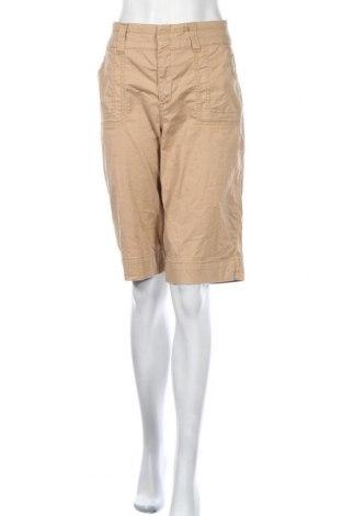 Дамски къс панталон Gloria Vanderbilt, Размер L, Цвят Кафяв, 98% памук, 2% еластан, Цена 9,82лв.