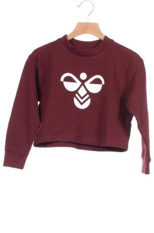 Παιδική μπλούζα Hummel, Μέγεθος 2-3y/ 98-104 εκ., Χρώμα Κόκκινο, 60% βαμβάκι, 38% πολυεστέρας, 2% ελαστάνη, Τιμή 6,50€