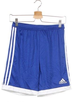 Παιδικό κοντό παντελόνι Adidas, Μέγεθος 12-13y/ 158-164 εκ., Χρώμα Μπλέ, Πολυεστέρας, Τιμή 12,86€