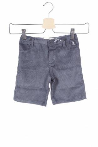 Παιδικό κοντό παντελόνι Tutto Piccolo, Μέγεθος 2-3y/ 98-104 εκ., Χρώμα Γκρί, 90% πολυεστέρας, 9% πολυαμίδη, 1% ελαστάνη, Τιμή 9,80€