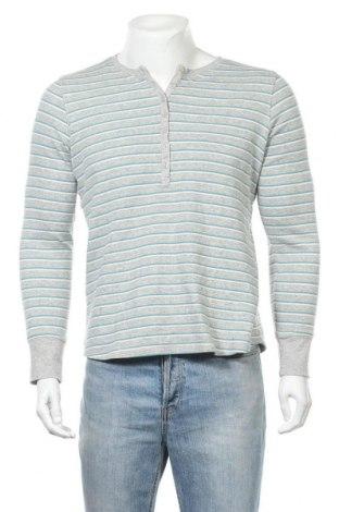 Мъжка блуза L.L. Bean, Размер L, Цвят Сив, 98% памук, 2% еластан, Цена 34,65лв.