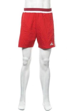 Ανδρικό κοντό παντελόνι Adidas, Μέγεθος M, Χρώμα Κόκκινο, Πολυεστέρας, Τιμή 12,28€