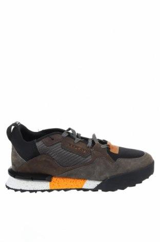 Ανδρικά παπούτσια Replay, Μέγεθος 46, Χρώμα Πολύχρωμο, Φυσικό σουέτ, κλωστοϋφαντουργικά προϊόντα, Τιμή 73,07€