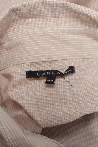 Γυναικείο πουκάμισο Carla F.
